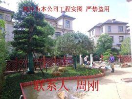 苏州  别墅庭院设计、豪宅别墅景观设计、  庭院景观绿化工程