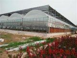 山东智能薄膜温室 蔬菜薄膜大棚报价 温室大棚建设