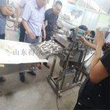 天妇罗牛蒡片加工设备 天妇罗裹浆机 裹浆油炸机