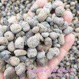 本格廠家供應 園藝陶粒 輕質陶粒 黏土生物陶粒