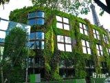 石家庄屋顶绿化施工