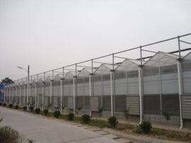 阳光板温室 PC板温室专业设计建造安装