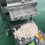 鸡米花裹粉机 专业鸡米花上粉机生产厂家可带料试机