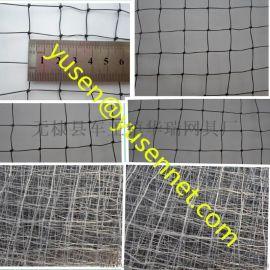 鸟网防鸟网尼龙网聚乙烯网PE网鸟网防护网天网各种鸟网定做厂家直销