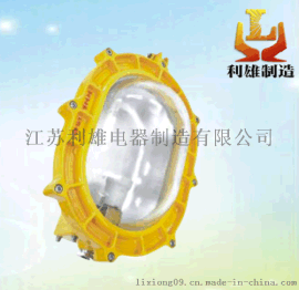 BFC8120內場強光防爆燈/BFC8120防爆應急強光燈
