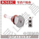 锅炉水位计电接点陶瓷电极DJM1815-87外螺纹水位电极棒