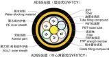 ADSS光纜-4芯自承全介質(300米跨距以下)單層