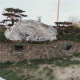 定制泰山石切片 房产装饰自然石 园林造景雪浪石摆件纹理石厂家