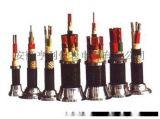 聚 乙烯绝缘钢带铠装电力电缆(VV22/VLV22)