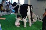 都市农场挤奶喂奶仿真挤奶牛挤奶羊
