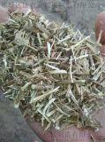 河南花生秧草粉 花生秧草粉價格 優質餵羊花生秧草段