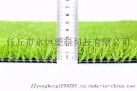 河北博纳人造草坪丨运动草丨景观草丨果岭草