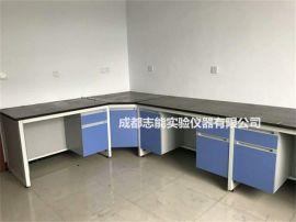 实验室仪器台 仪器桌 钢木仪器操作台 全钢工作台