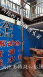 小流量高揚程QYDB潛油電泵專業生產廠家