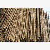 绿化支撑杆,中国领先的绿化支撑杆批发厂家一站式品牌服务