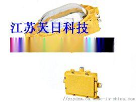 ZBF801防爆泛光灯,BFC8120内场泛光灯