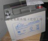 理士蓄电池DJW12100电力系统