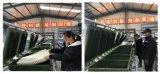 天然乳胶枕头自动生产线