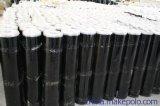 BAC高分子反應粘自粘防水卷材
