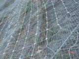 廠家直銷鍍鋅山體邊坡防護網¥絞索網¥蜘蛛網