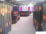 1/2出口外贸标准镀锌浸塑PVC电焊网