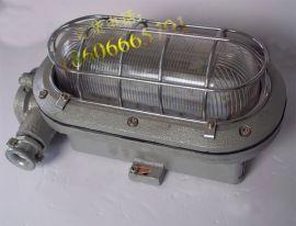 DGC16/127L矿用隔爆型支架灯