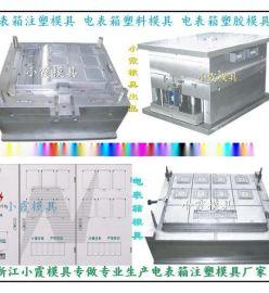 台州模具公司 标准新国网单相十二位电表箱注塑模具欢迎咨询
