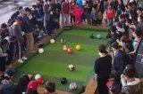 真人桌上檯球出租,北京真人桌上檯球道具出租