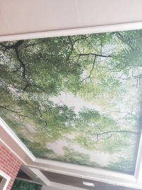 竹木钎维扶墙板生产线 pvc板材生产线 木塑墙板生产线批发