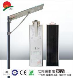 30W太阳能路灯6米路灯智能人体感应路灯户外LED路灯灯头一件代发