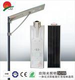 30W太陽能路燈6米路燈智慧人體感應路燈戶外LED路燈燈頭一件代發