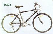 R002型自行车
