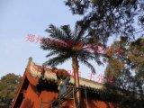 8米仿生椰子樹通信塔廠家,10米仿生棕櫚樹通訊塔