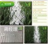 美創人造草坪運動系列單筋加絲草