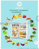 低价促销格力单门冰箱
