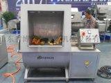 安徽蚌埠 BH-700 淨菜清洗機生產廠家