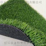 围挡草坪 工程草坪 一公分加密加厚 草坪厂家直销