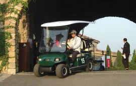 高尔夫球车(LT-A4)