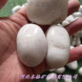 河北石家庄灵寿3-5公分白色雨花石批发