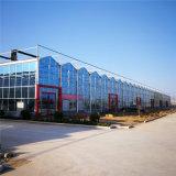玻璃温室建设施工 连栋玻璃温室大棚造价预算