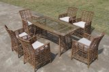 新款藤製餐桌椅 ,戶外花園傢俱 休閒編藤桌椅(KY-2153)