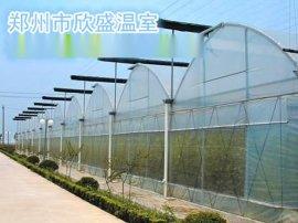 郑州蔬菜大棚温室大棚建造