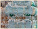 单绳电动葫芦1吨起升12米,防爆葫芦,行吊葫芦,新乡葫芦厂家