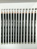 Raffaele拉菲尔NO.6600素描绘画铅笔