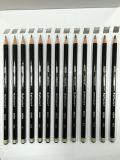 Raffaele拉菲爾NO.6600素描繪畫鉛筆