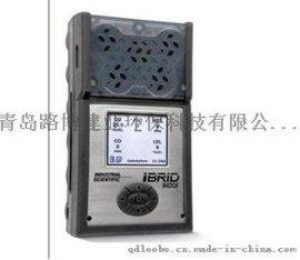 复合六气体检测仪美国英思科MX6进口原装