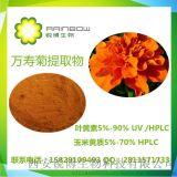 萬壽菊提取物葉黃素玉米黃質5%-60%