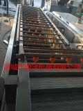 广州气泡果蔬清洗机 气泡果蔬清洗机厂家