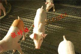 養豬軋花網多錢一平米 優質豬牀網 重型軋花網