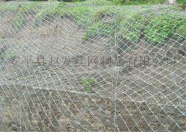 绿色主动防护网_边坡绿化工程_柔性主动防护网